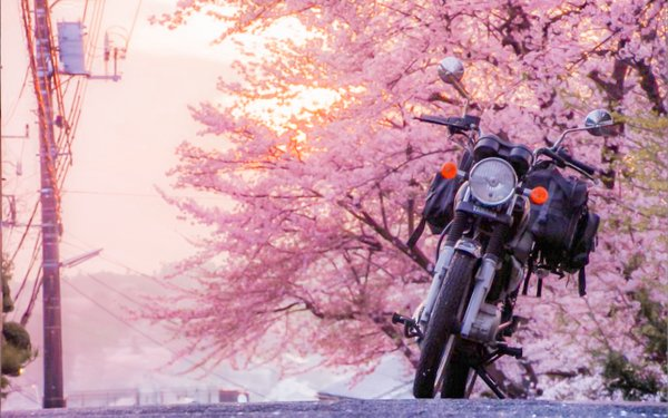 f:id:MotorcycleTourist:20160503211149j:plain