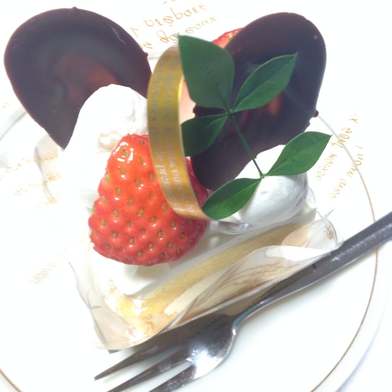 f:id:Strawberry-parfait:20140101211109j:plain