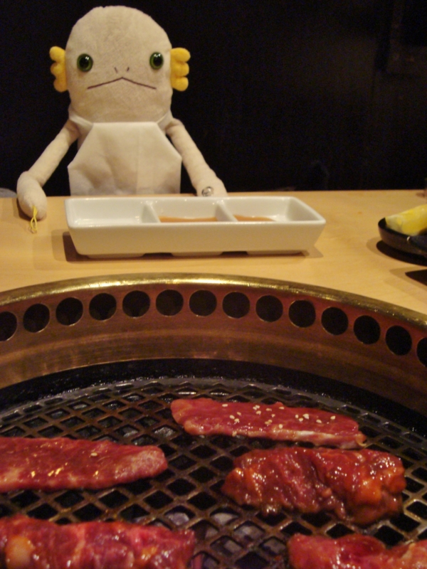 Gyu Kaku Japanese Bbq Dining Chicago Il エイリアン 地球を行く