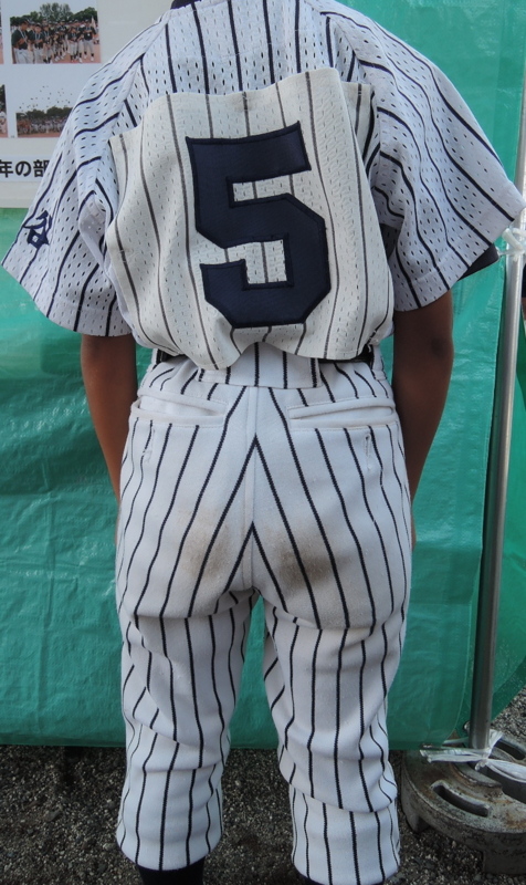 f:id:baseball-birthday:20150617152417j:plain