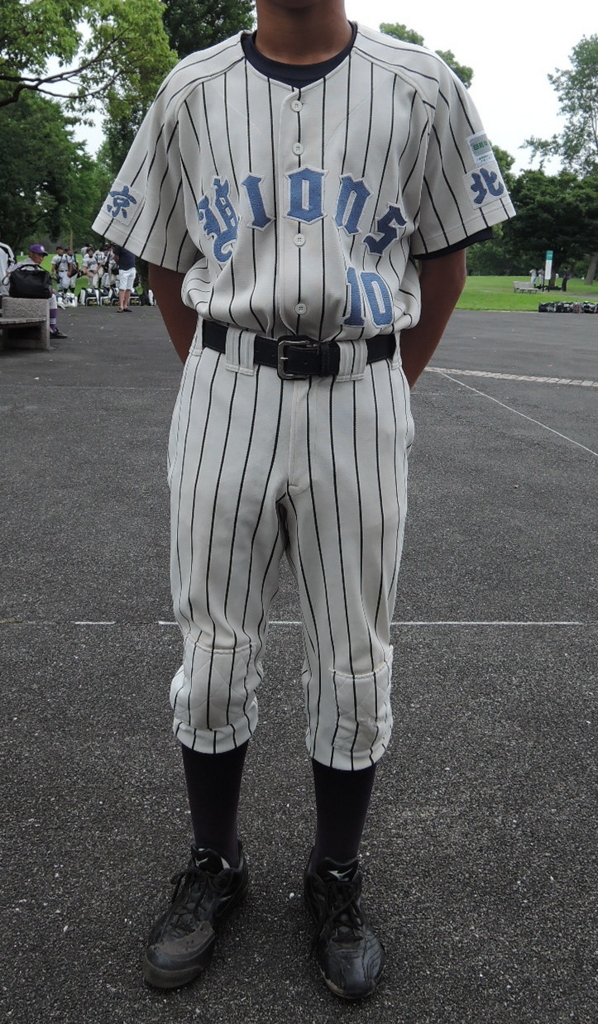 f:id:baseball-birthday:20150711233956j:plain