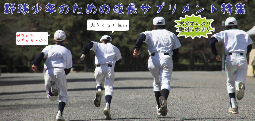 f:id:baseball-birthday:20150910154951p:plain