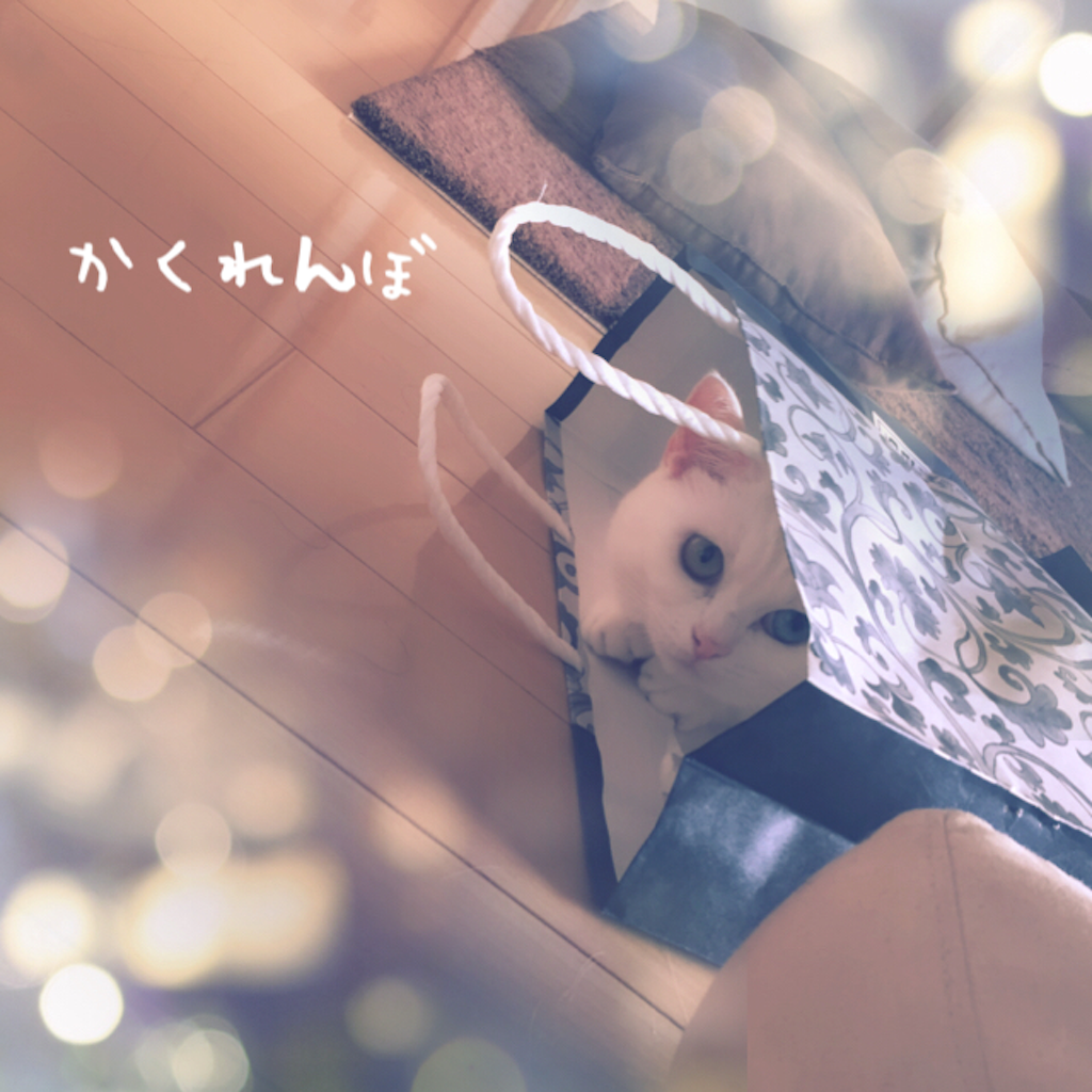 f:id:belly0628:20151009182032p:image
