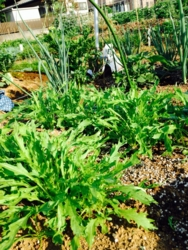 f:id:betty1:20140601065658j:plain