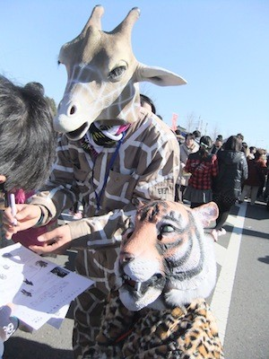 f:id:camelopardalis:20130204092146j:image
