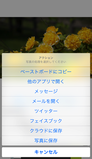 f:id:gadgerepo:20151113195704p:plain