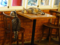 Cats of Cat's Buddy Cafe, #4725