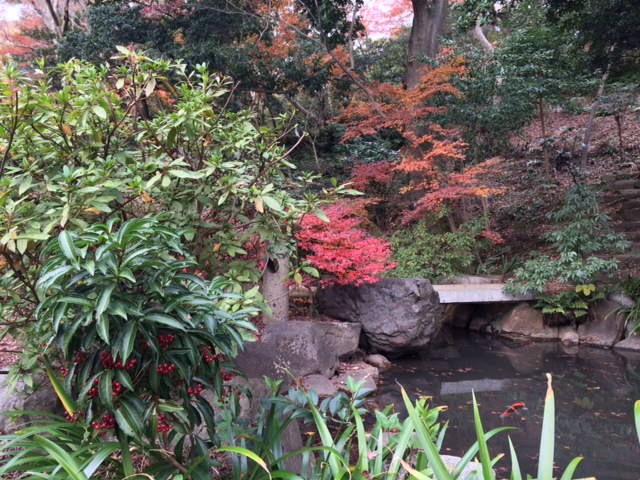 f:id:impatiens101:20141207090612j:plain