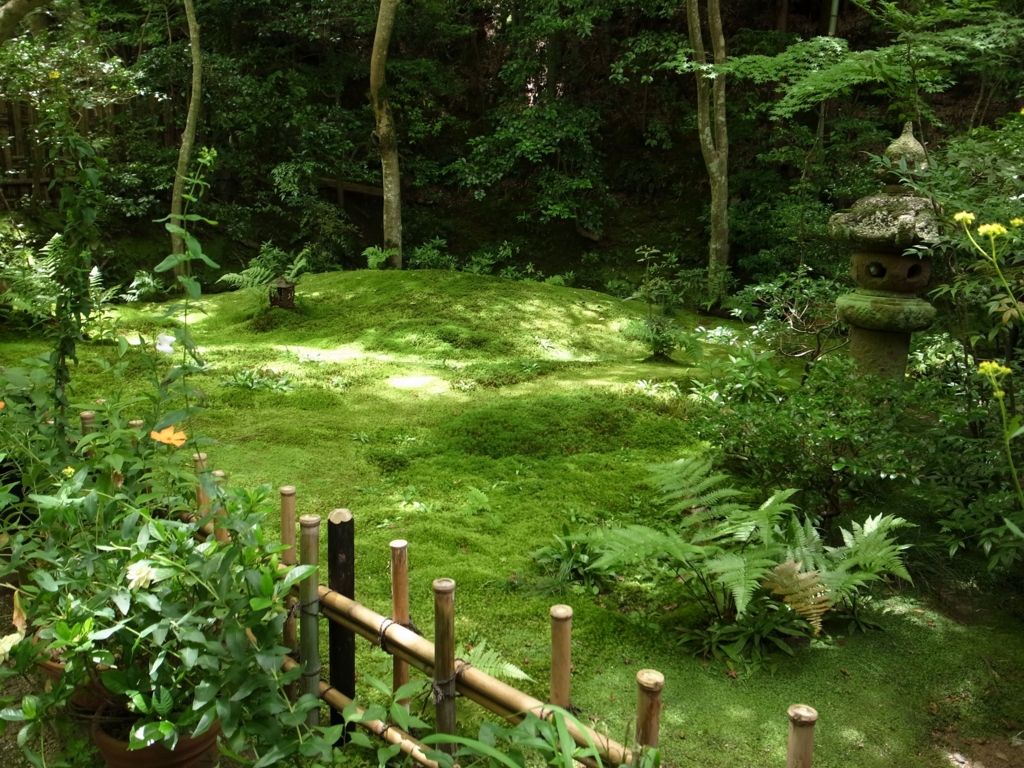 f:id:impatiens101:20150720222000j:plain