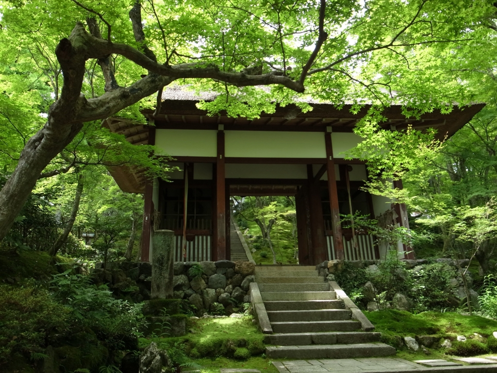 f:id:impatiens101:20150720222510j:plain