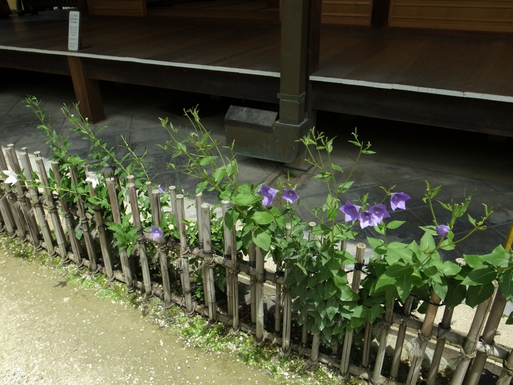 f:id:impatiens101:20150720223341j:plain