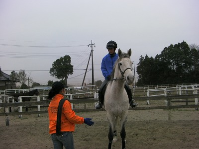 f:id:interactionhorseschool:20110408160142j:image