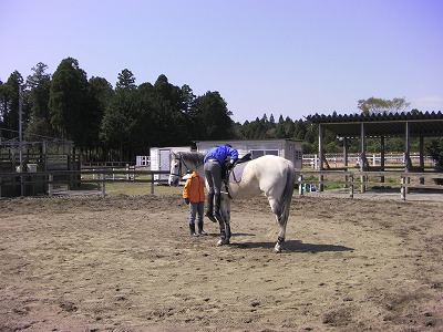 f:id:interactionhorseschool:20110412180752j:image