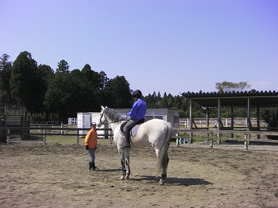 f:id:interactionhorseschool:20110412181008j:image