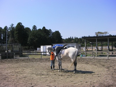 f:id:interactionhorseschool:20110412181009j:image