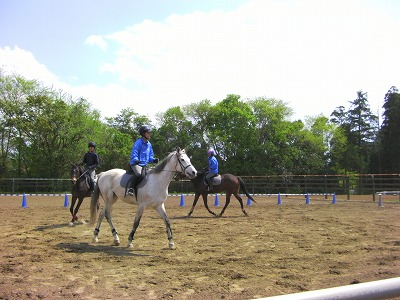 f:id:interactionhorseschool:20110429173844j:image