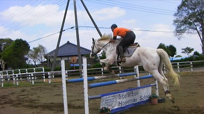f:id:interactionhorseschool:20110429174148j:image