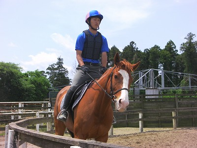 f:id:interactionhorseschool:20110522152111j:image