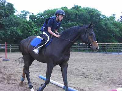 f:id:interactionhorseschool:20110606162542j:image
