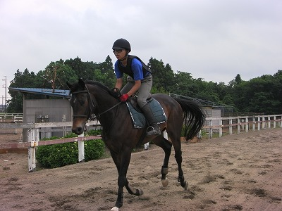 f:id:interactionhorseschool:20110610165704j:image