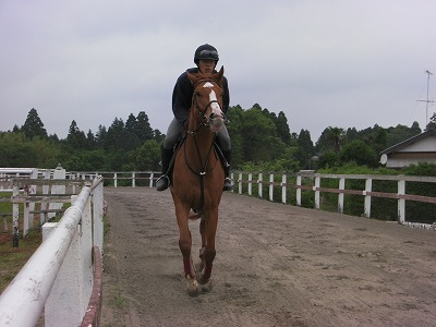f:id:interactionhorseschool:20110610165841j:image
