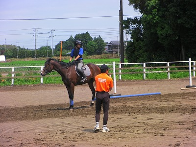 f:id:interactionhorseschool:20110614170717j:image