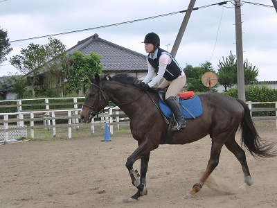 f:id:interactionhorseschool:20110703151640j:image