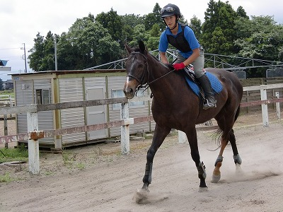 f:id:interactionhorseschool:20110703153013j:image