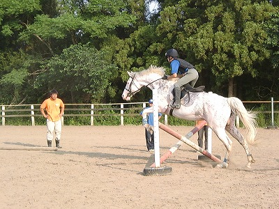 f:id:interactionhorseschool:20110709155258j:image