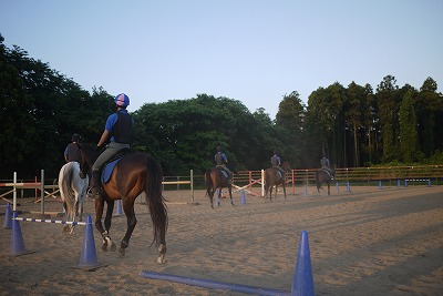 f:id:interactionhorseschool:20110711165353j:image