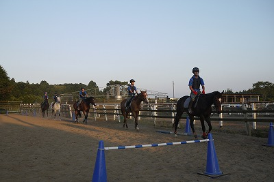 f:id:interactionhorseschool:20110711165914j:image