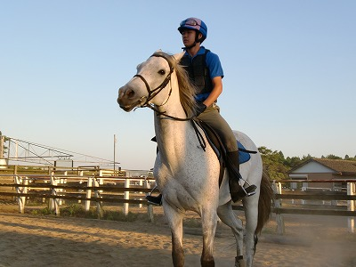 f:id:interactionhorseschool:20110715174831j:image