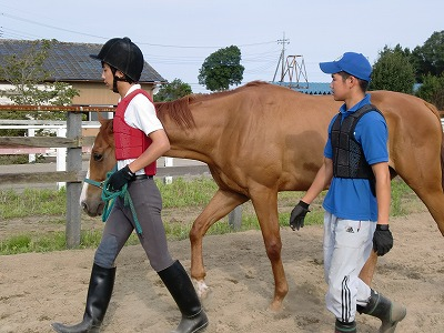 f:id:interactionhorseschool:20110724182846j:image