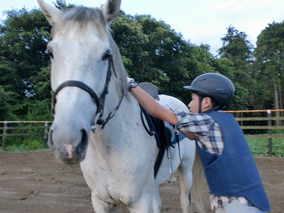 f:id:interactionhorseschool:20110725181058j:image