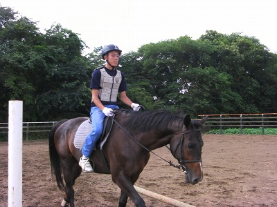 f:id:interactionhorseschool:20110802105518j:image