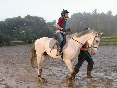 f:id:interactionhorseschool:20110805180131j:image