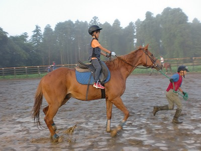 f:id:interactionhorseschool:20110805180132j:image