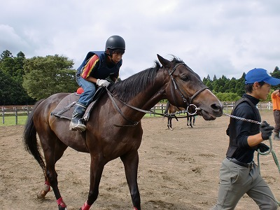f:id:interactionhorseschool:20110806153319j:image