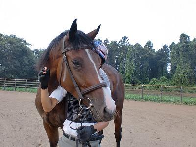 f:id:interactionhorseschool:20110818155600j:image
