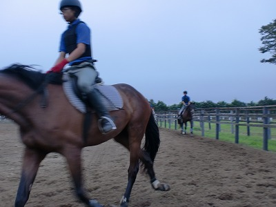 f:id:interactionhorseschool:20110829165312j:image