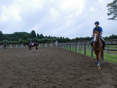 f:id:interactionhorseschool:20110901162525j:image