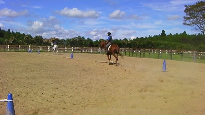 f:id:interactionhorseschool:20110916181312j:image