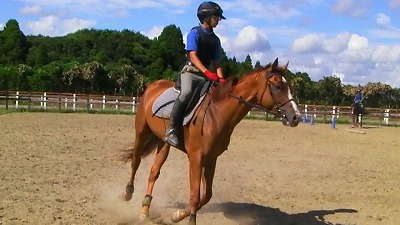 f:id:interactionhorseschool:20110916181801j:image