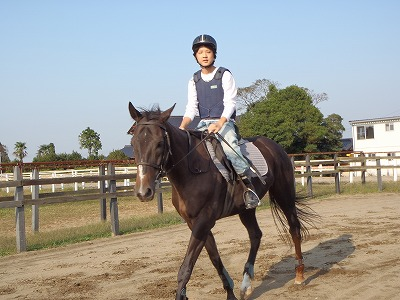 f:id:interactionhorseschool:20111008161234j:image