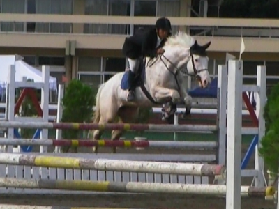 f:id:interactionhorseschool:20111025082723j:image