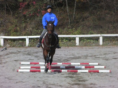 f:id:interactionhorseschool:20111109175302j:image