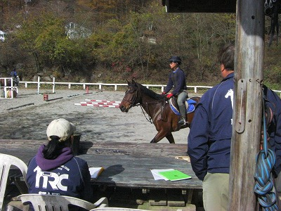 f:id:interactionhorseschool:20111109175303j:image