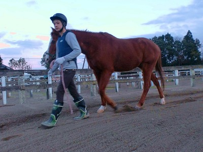 f:id:interactionhorseschool:20111223180438j:image