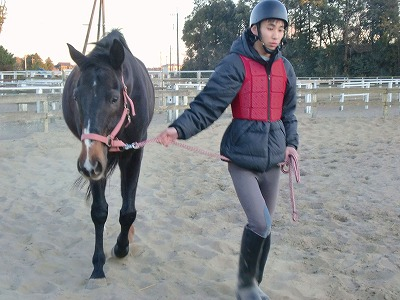 f:id:interactionhorseschool:20120107175455j:image