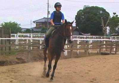 f:id:interactionhorseschool:20120724180042j:image